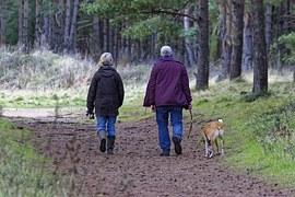 dog-walking-1070076__180