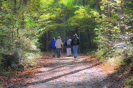 hiking-1232453__180